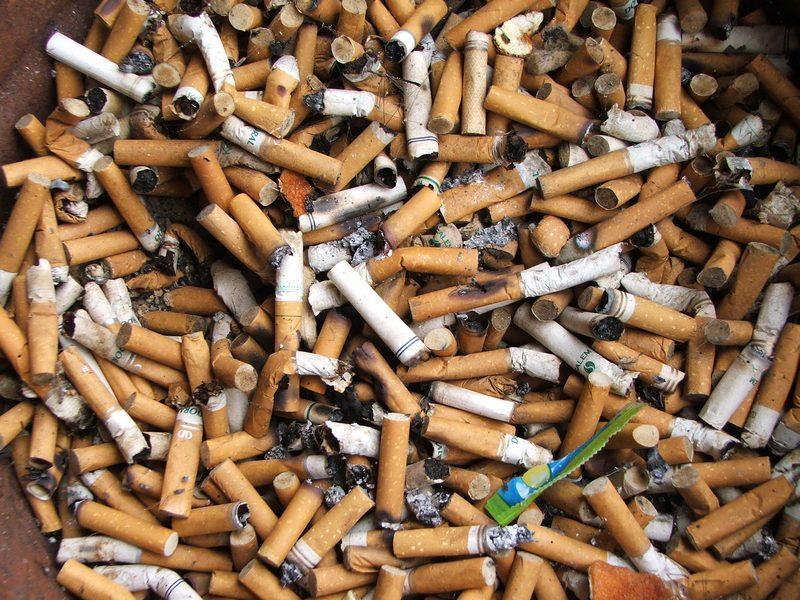 Отходы табачные изделия сигареты бенсон энд хеджес купить в москве в розницу