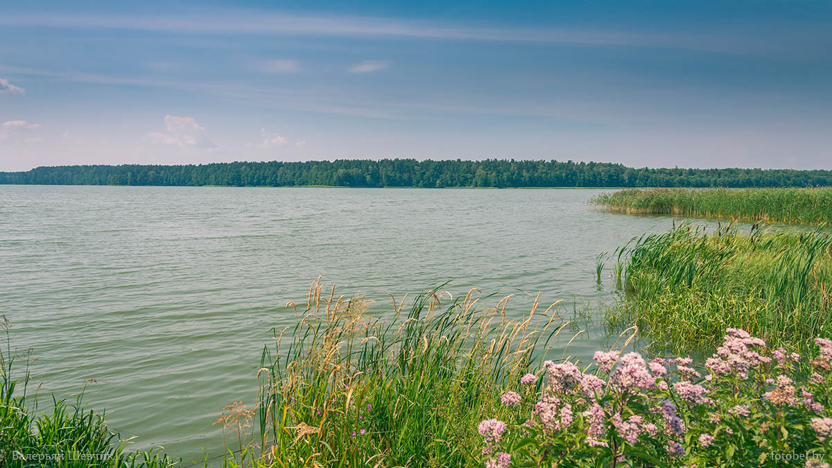 белое озеро башкирия фото согласимся тем