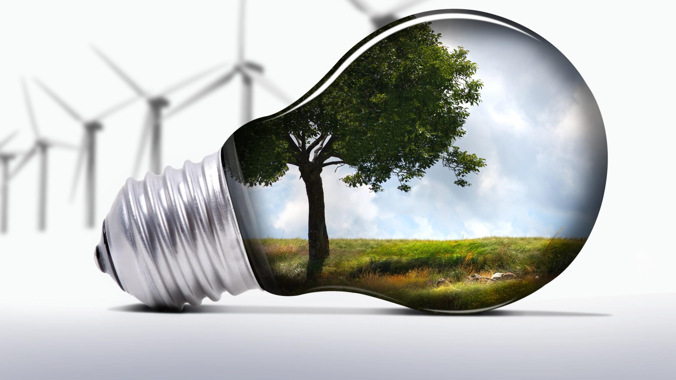 11 ноября – международный День энергосбережения.