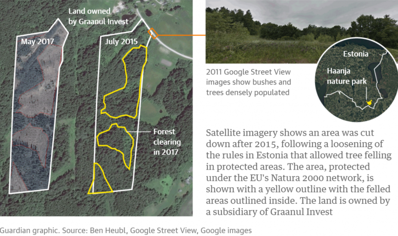 Участки леса, вырубленные после 2015 года. Желтым цветом выделены территории под охраной Natura 2000