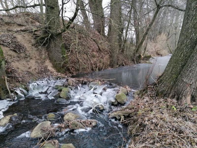 течение замедляется, дно реки покрывается мусором
