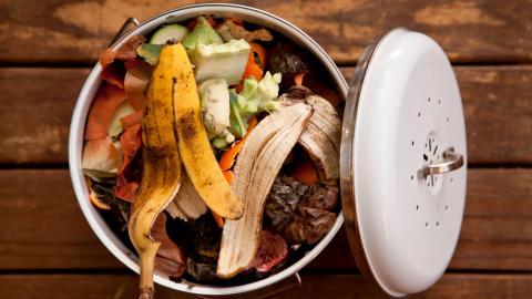 «У многих есть квартира, но нет денег на еду». Почему в пандемию мы стали питаться иначе