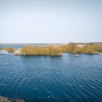 Чистая Припять, грязная Припять. Рейтинг и антирейтинг рек от Минприроды