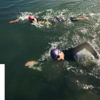 Белорусские плавательные клубы присоединились к благотворительной акции «100 гадзiн з А1» и добавили в копилку акции более 3600 часов