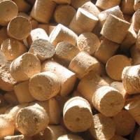 Беларусь поставляла в Литву биотопливо с высокой концентрацией радиации