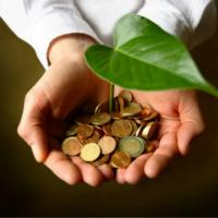 В Беларуси стартовал проект «Содействие переходу Республики Беларусь к «зелёной» экономике»