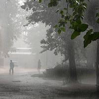 В Беларуси в ближайшие сутки ожидаются ливни, грозы, шквалистый ветер