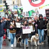 В Петербурге активисты провели марш против убийства животных ради меха и кожи