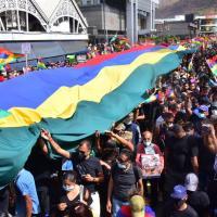 На Маврикии тысячи людей вышли на улицы из-за массовой гибели дельфинов