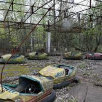 В Украине в Чернобыльской зоне отчуждения создадут биосферный заповедник