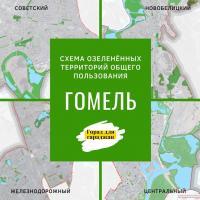 Первый раз - с горожанами. Сегодня началось обсуждение Схем озеленённых территорий в Гомеле