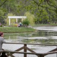 Кроме новой оранжереи в минском Ботаническом саду хотят построить кафе и паркинг