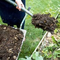 Удобрение своими руками. Как и из чего изготовить компостную кучу