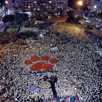 В Тель-Авиве прошла многотысячная акция в защиту прав животных