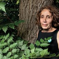 Остановите вырубку! Лидер  «Партизанов садовников» в Грузии объявила голодовку
