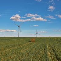 В Беларуси собираются отбалансировать «зелёную» энергетику с учетом запуска АЭС. Что станет с ВИЭ?