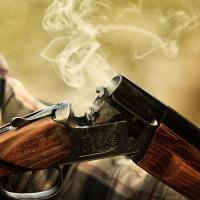 Минлесхоз ответил активистам об охоте с 16 лет. И это надо прочитать!