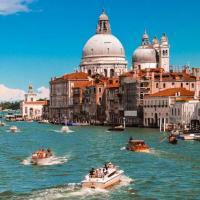 В каналы Венеции вернулись лебеди и рыба. Из-за отсутствия туристов там очистилась вода