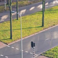 В нидерландском городе 10% асфальта планируют заменить травой