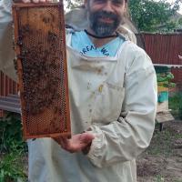 «Наблюдая за пчелами, я понял: смысл жизни – в продолжении рода»