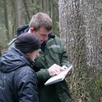 Национальный парк «Браславские озёра» прошёл аудит FSC