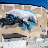 Белые медведи без льда и тюлени с нефтью. 15 ярких экограффити