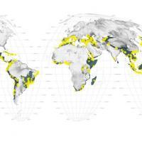 Атлас конца света. Как города уничтожают ареалы обитания диких животных