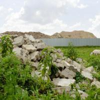 «Может вы живете в плохих экологических условиях?» Как дети пожаловались Лукашенко на свалку и что из этого вышло