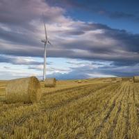 Почему в Беларуси «зелёный» сектор экономики развивается так медленно?
