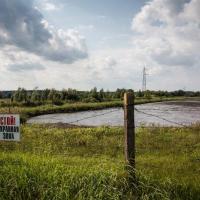 История местных активистов «иловых прудов» (видео)