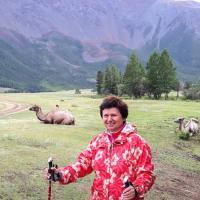 Миндаль, сирень и липа. Как бывший терапевт создаёт в Минске аллеи цветущих деревьев
