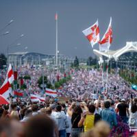 «Шура, хватит пилить!» Как беларусы отметили день рождения Лукашенко (фото)