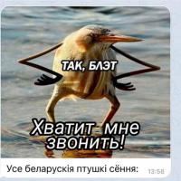 За день беларусы позвонили птицам более 50 тысяч раз