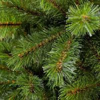 Чем грозит самовольная вырубка новогодней ели?