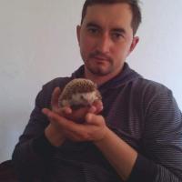 Мнение. Был арбористом – стал (почти) террористом, или несколько слов о приговоре Степану Латыпову