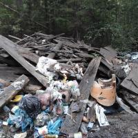 Гражданская сознательность vs финансовый вопрос. Как вывезти мусор из деревни