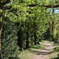 Весна на Луковой горе (фоторепортаж)