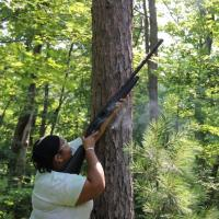 Ученые охотятся за листьями, чтобы узнать выживут ли деревья в условиях изменения климата