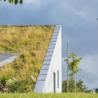 Дом, на котором растет трава, построили в Литве