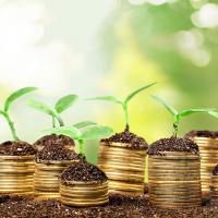 Климат топит бизнес. Как минимизировать риски для беларусской экономики?