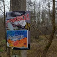 Они защищают лосось от браконьеров. Первые кадры из волонтёрского лагеря