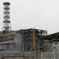 Мифы о Чернобыле. Нет, дикая природа не процветает в зоне вокруг АЭС