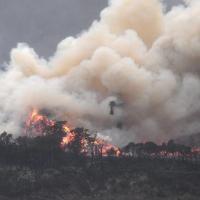 Дым от пожаров в Австралии достиг Чили и Аргентины