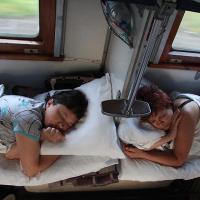 Готовы ли поменять туристы самолет на поезд ради экологии