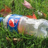 Coca-Cola, Pepsi и Nestle в третий раз стали главными пластиковыми загрязнителями планеты