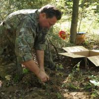 В Щучинском районе ботаники пересадили краснокнижники подальше от дороги М6