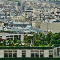 Рассказываем, как люди озеленяют крыши в ответ на изменение климата