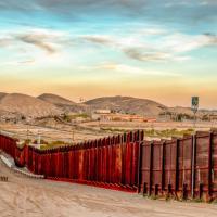 Стены на границах стран мешают животным, которые бегут от глобального потепления