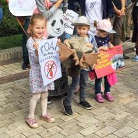 По всей Украине прошли марши в защиту животных