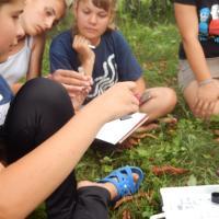 Как дети с беларусско-украинского Полесья учились следить за состоянием малых рек Припяти